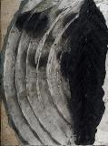 Arquitectura vegetal. 250 x 187 cm. Hoyo de manzanres, 2009.