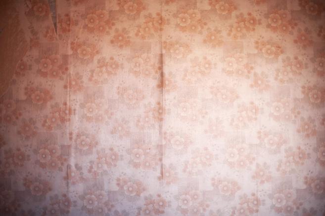 Inner scenery  Paisaje interior - 2013 - Olga Simón