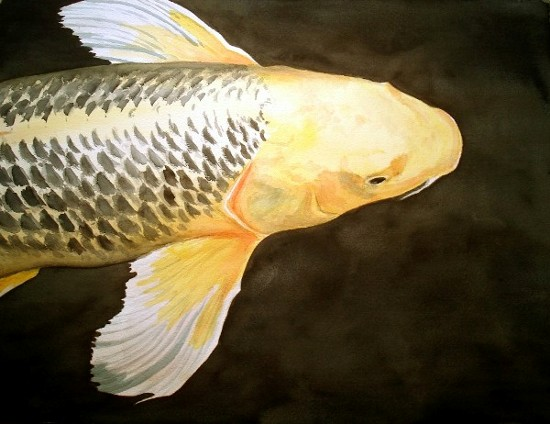 GOLDEN KOI - Acuarela