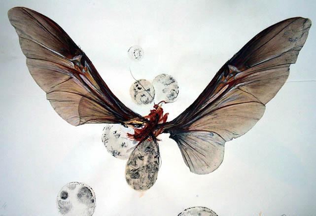 Mariposa 112x75cm mixta