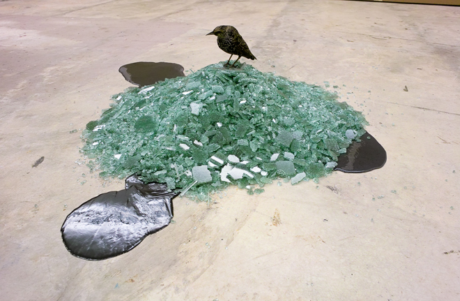 Birds Nest. 2009.