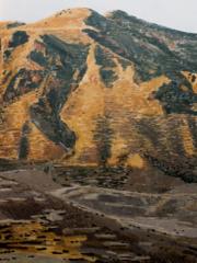 David Lopez Panea oleo sobre lienzo-200x150 cm