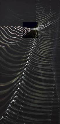 Àlvar Calvet - Naixement dEnitharmon, 80 x 160 cm. mixta sobre madera