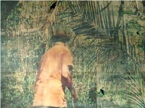 Ernesto Canovas, Jungle Fever 2011,mix media on resin