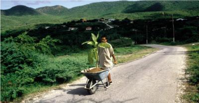 Wilfredo Prieto, Paseo, 2000