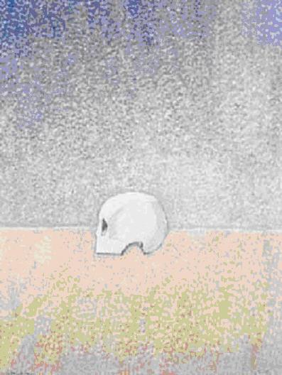 Cráneo blanco, 2001