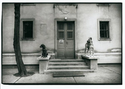 Guardian dogs, Budapest, 1976