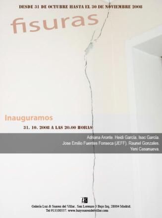 Exposición Fisuras