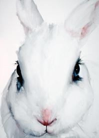 Santiago Ydañez. Rabbit. 250x180 cm