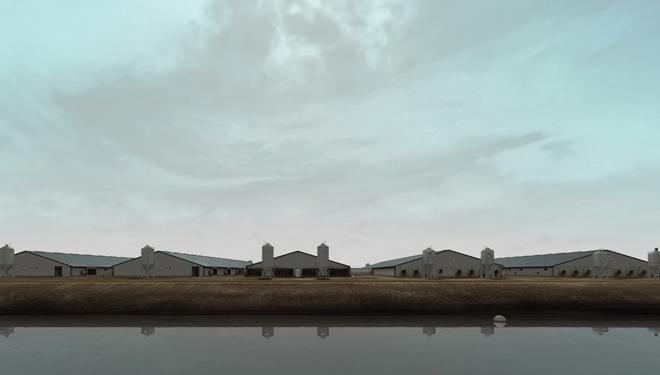 John Gerrard, Sow Farm, near Libbey, Oklahoma, Realtime 3D, 2008