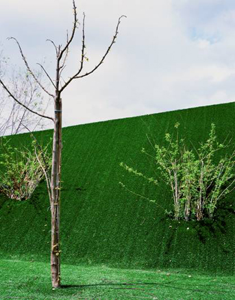 Vi premio internacional de fotograf a pilar citoler premio nov 2011 arteinformado - Piscina municipal santander ...