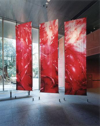 Naoko Fujii, Rojo - Vertical
