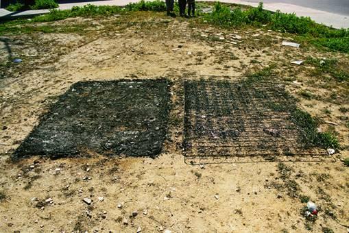 Juan Carlos Robles, Corshon quemado
