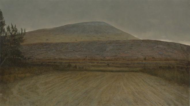 Julián Valle, La piel como un río 11.17, 2011