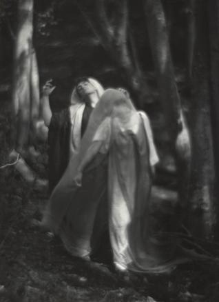 Imogen Cunningham, El bosque más allá del mundo, c. 1912