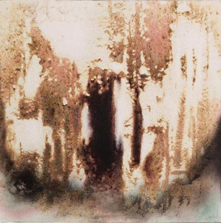Xavier Gónzalez d´Egara, Árbol de la consciencia