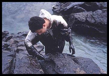 Allan Sekula, Volunteer on the edge, Islas Cíes 12-20-02, 2002-03