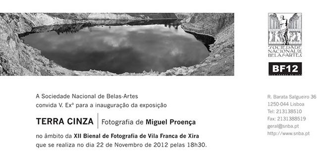Miguel Proença, Terra Cinza