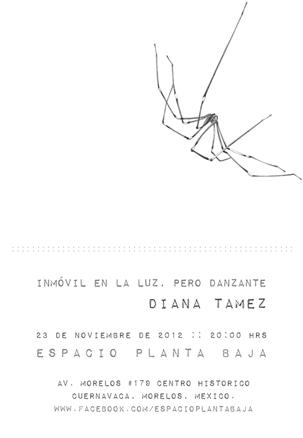 Diana Tamez, Inmóvil en la luz, pero danzante
