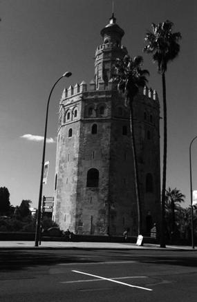 Lotty Rosenfeld, Una milla de cruces, Sevilla, Marzo de 2013