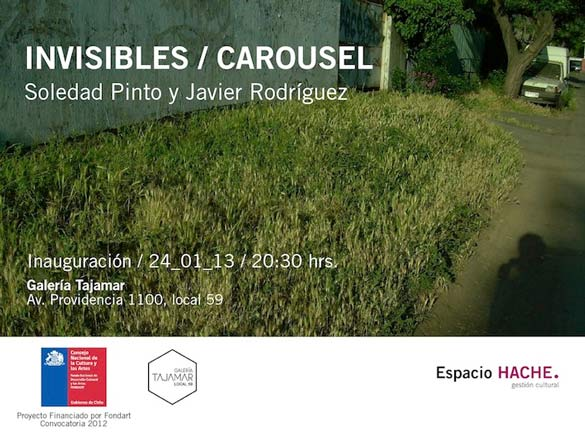 Soledad Pinto - Javier Rodríguez, Invisibles