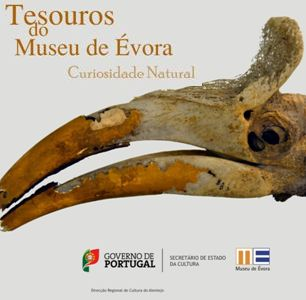 Tesouros do Museu de Évora