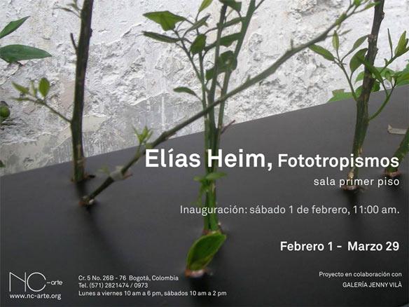 Elías Heim, Fototropismos