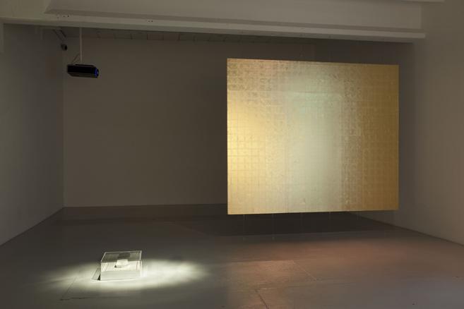 Runo Lagomarsino, instalación, 2014