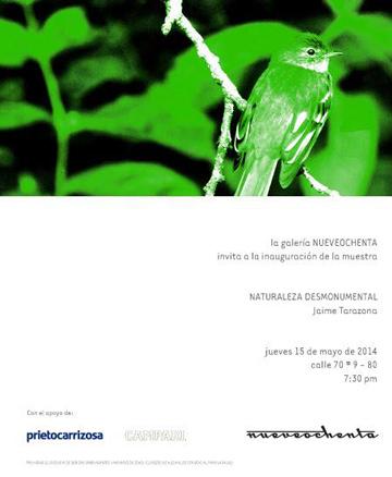 Jaime Tarazona, Naturaleza desmonumental
