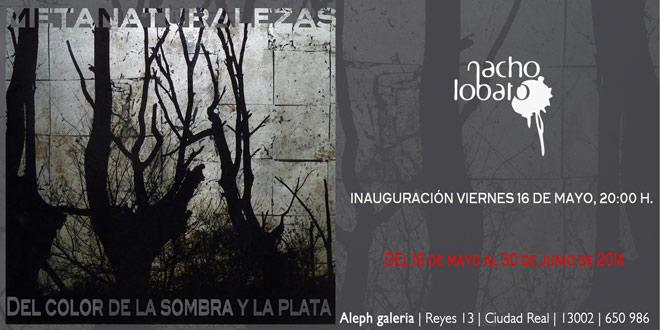 Nacho Lobato, Metanaturalezas, del color de la sombra y la plata