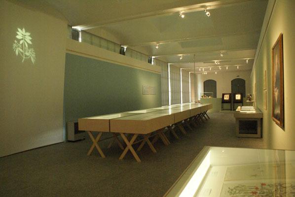 Mutis,Ciencia y Arte en el nuevo reino de Granada.