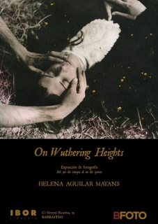 ON WUTHERING HEIGHTS