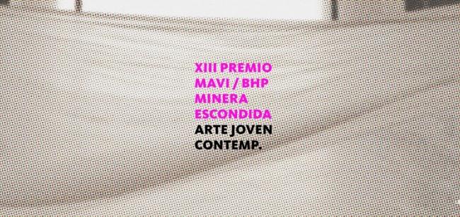 XIII Premio MAVI - BHP / Minera Escondida de Arte Joven Contemporáneo