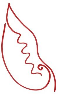 Os ovários das papoilas — Imagen cortesía de Sismógrafo