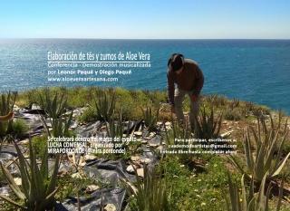 Elaboración de tés y zumos de Aloe Vera. Conferencia - Demostración musicalizada, por Leonor Paqué y Diego Paqué