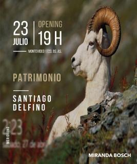 Patrimonio_Santiago_Delfino_2019_Miranda_Bosch