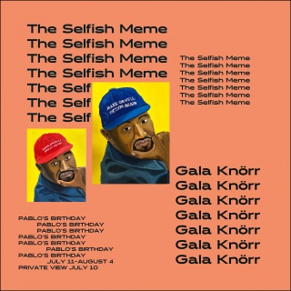 The Selfish Meme