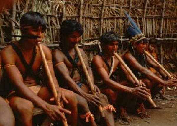 Instrumentos musicales indígenas