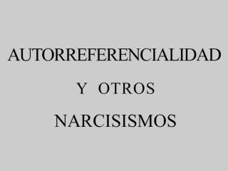 Autorreferencialidad y otros narcisismos