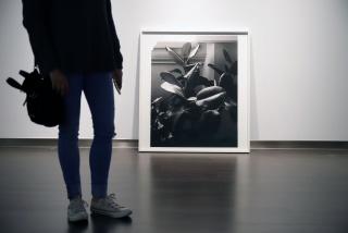 """Giovanni Ozzola. """"Mi verdad, con su tiempo y espacio -algo tuyo y mío- 2018-2019"""" — Cortesía de la Fundación Unicaja"""