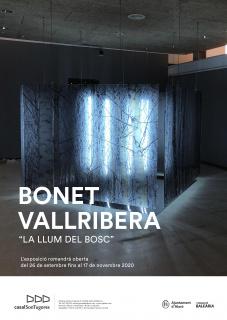Bonet Vallribera. La llum del bosc