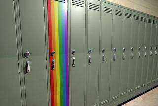 TRANSEDUCAR: ARTE, EDUCACIÓN Y CULTURAS LGBT
