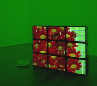 Diana Thater, Red Flowers Video Wall, 2001. Videoinstalación en nueve monitores. Colección CIAC – Cortesía de FotoMéxico 2017