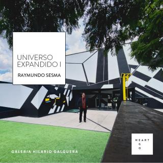 Raymundo Sesma. Universo expandido I
