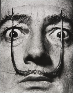 Philippe Halsman, «Como dos centinelas erguidos, mi bigote custodia la entrada a mi verdadero yo», Dalí´s Mustache 1954 Philippe Halsman Archive © 2016 Philippe Halsman Archive / Magnum Photos Exclusive rights for images of Salvador Dalí: Fundació Gala-Sa