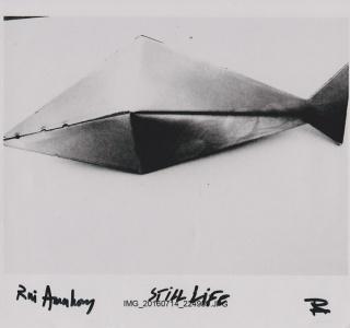 Rui Anahory, Still life