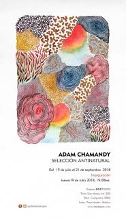 Adam Chamandy