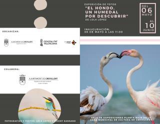 """Exposición fotográfica """"El Hondo un humedal por descubrir"""""""