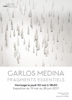 Carlos Medina. Fragments Essentiels
