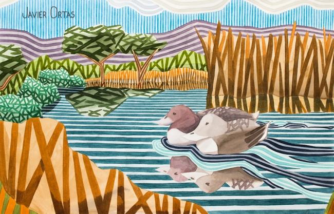 Dos patos, obra de Javier Ortas